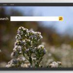 Bing Redirect vírus instantâneo