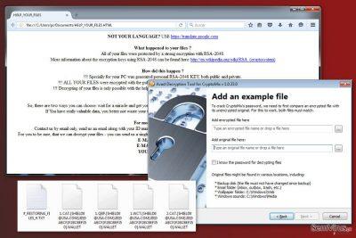 Uma imagem do vírus CryptoMix